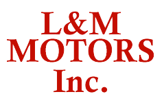 L and M Motors Inc